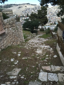Jesus' path from Caiaphas' house to the Garden and back once under arrest